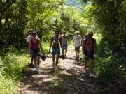 Trekking no Parque das Laranjeiras